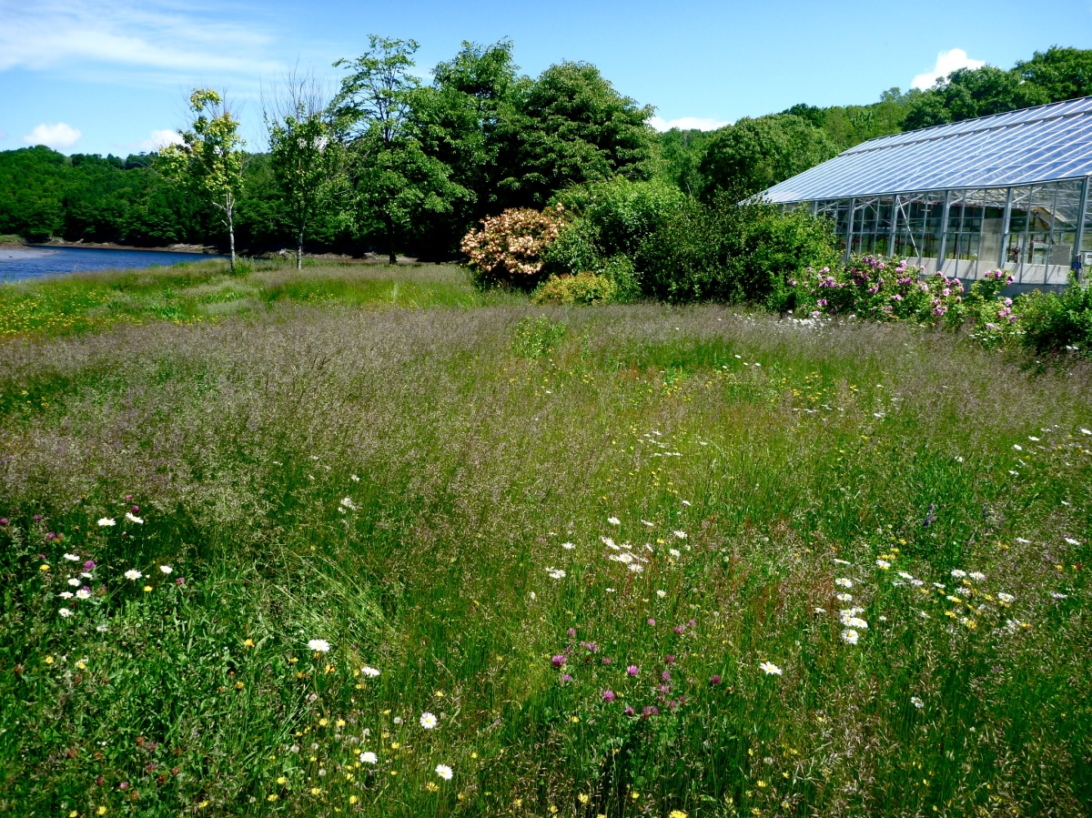 Community Greenhouse & Waterfront Gardens